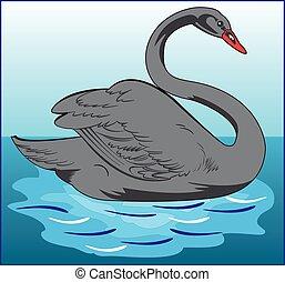 SWAN WATER BIRD