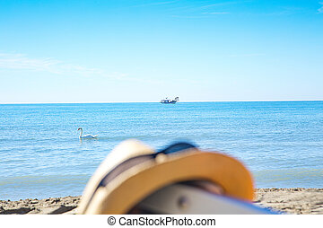 swans and fishing boat in the sea early in the morning near the beach