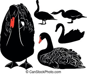 swans bird silhouettes collection isolated on black background
