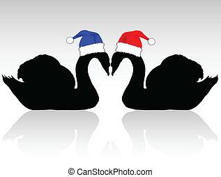 swans, hatt, två, jul