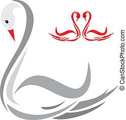Swans on white background