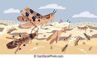 Swarm of locusts attacking plants field vector illustration...