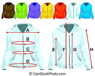 Sweatshirt template with measurement and colorful collection...