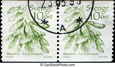 SWEDEN - CIRCA 1983: A stamp printed in Sweden shows Norway Maple - Acer platanoides, circa 1983