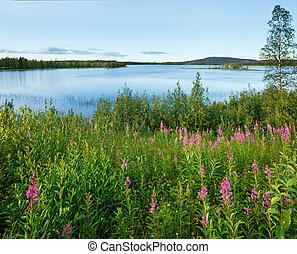 (sweden)., verão, lago, vista