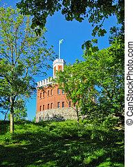 Swedish castle