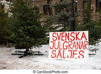 Swedish Christmas trees for sale