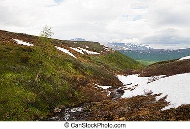 Mountain stream in Swedish Lapland in summer.