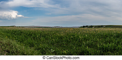 Sweeping Panorama of Grass in Badlands