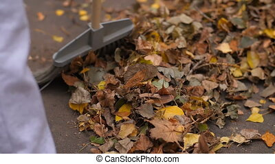 Sweeping yellow leaves - Woman sweeping yellow leaves at the...