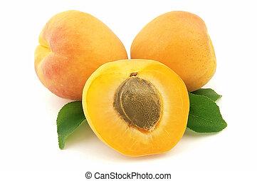 Sweet apricot