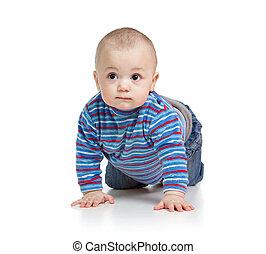 Sweet baby child kid crawling, isolated