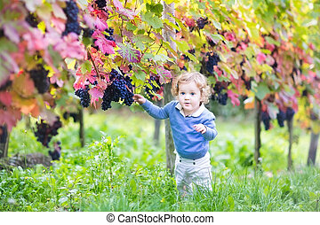 Sweet baby girl with curly hair playing in a beautiful autumn vi