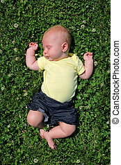 Sweet Baby Sleeping Outside in Clover Field