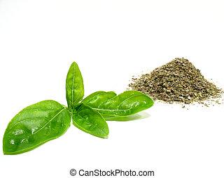 Sweet basil - Detail sweet basil, dry-up herb