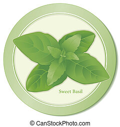 Sweet Basil Herb Icon - Sweet Basil herb icon, flavorful...