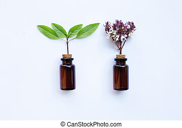 Sweet Basil with Essential Oil in a Glass Bottle