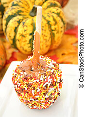 Sweet Candy Apple on a Plate