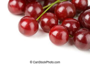 sweet cherries isolated