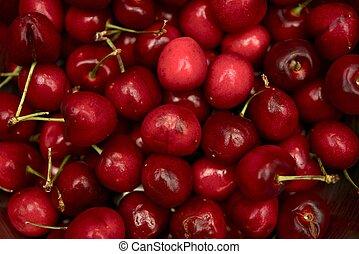 Sweet Cherries - Fresh Organic Sweet Cherries Closeup....