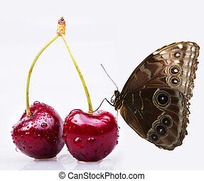 Sweet cherry and butterfly macro background