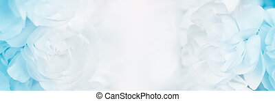 sweet color carnation in soft and blur style for background...