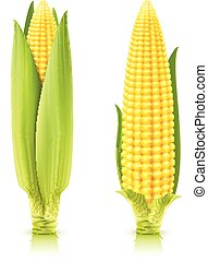 Sweet Corn Set
