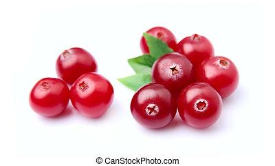 Sweet cranberries