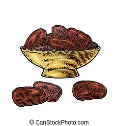 Sweet dates fruit in the bowl. Vector black vintage engraving
