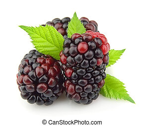 Sweet dewberry with leafs close up