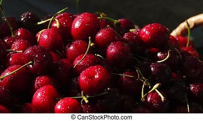sweet fresh cherries with dew drops, 4k.