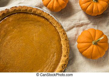 Sweet Homemade Thanksgiving Pumpkin Pie