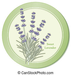 Sweet lavender herb icon, classic ingredient of French cooking herb blend, Herbes de Provence. Fragrant flowers for perfume. Copy space. See other herbs and spices in this series. EPS8 compatible.