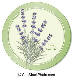 Sweet Lavender Herb Icon - Sweet lavender herb icon, classic...