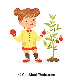 Sweet little girl picking tomatoes in the garden, kids healthy food concept colorful vector Illustration