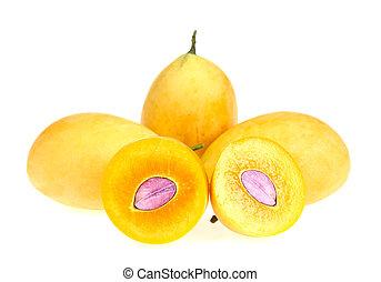 Sweet Marian plum thai fruit isolated on white background (Mayongchid Maprang Marian Plum and Plum Mango, Thailand)