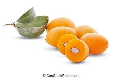 sweet Marian plum thai fruit isolated on white background