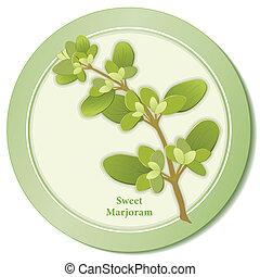 Sweet Marjoram Herb Icon - Marjoram icon, sweet scented ...