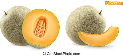 Cantaloupe Illustrations And Clipart 1 991 Cantaloupe Royalty Free Illustrations Drawings And Graphics Available To Search From Thousands Of Vector Eps Clip Art Providers *has a cantaloupe farm* me: cantaloupe illustrations and clipart 1