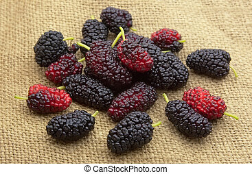 Sweet mulberry