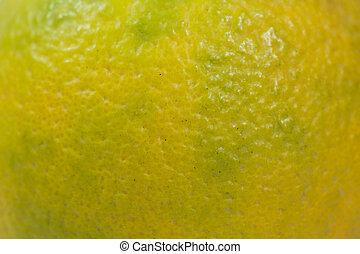 Sweet orange skin background