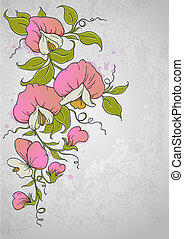 Sweet pea - Vector vintage floral background with sweet pea...