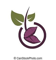 sweet potato vegetarian food icon and vector logo
