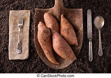 Sweet Potato Yams - Organic farm to table healthy eating...