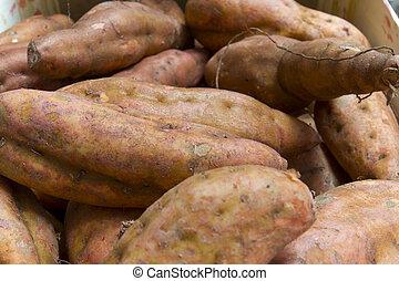 Sweet potatoes - Baked sweet potatoes for roasting
