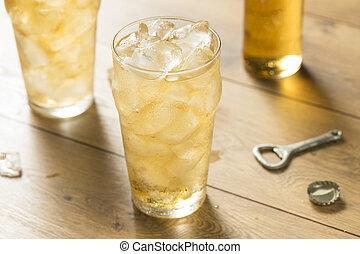 Sweet Refreshing Vanilla Cream Soda