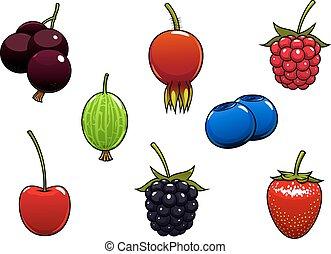 Sweet ripe juicy isolated berries