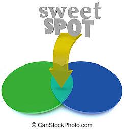 Sweet Spot Overlapping Venn Diagram Area Perfect Ideal -...