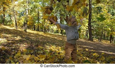 Sweet toddler boy having fun with autumn leaves