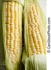 sweetcorn - Fresh sweet corn on the cob with leaves